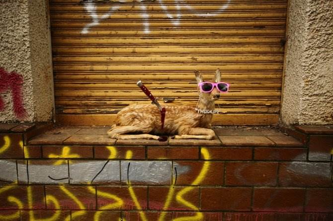 Peter Pink розовый стрит-арт