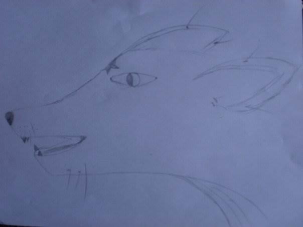 Рисунки от Волчица