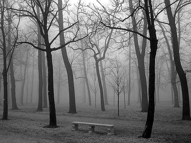 Снимаем черно-белое фото