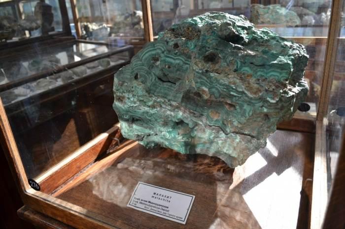 Геологический музей СПб (скелеты динозавров, археология, минералы) фото