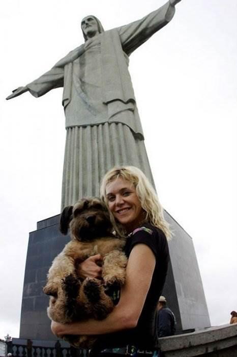 Оскар – собака-путешественница