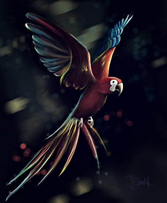 Лукьянович Ксения иллюстрации (Kinovich)