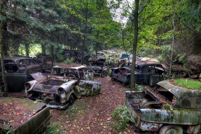 Кладбище автомобилей в бельгийском лесу