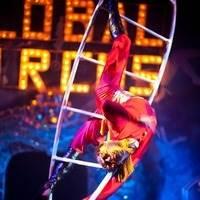 цирк шоу