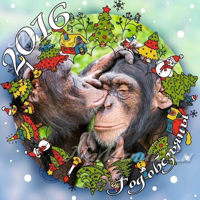 Новогодние обезьяны фото