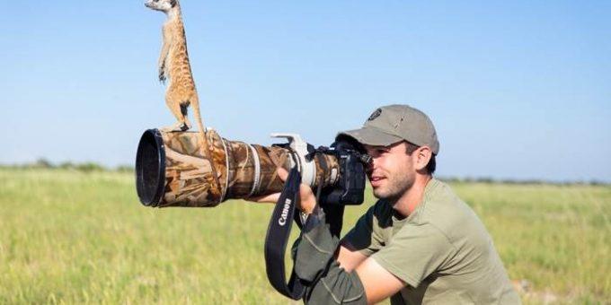 Фотограф и лучший друг сурикатов Уилл Беррард-Лукас
