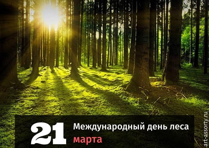 Международный день леса картинка