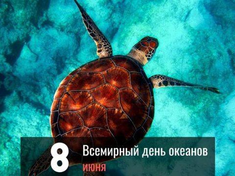 Всемирный день океанов картинка