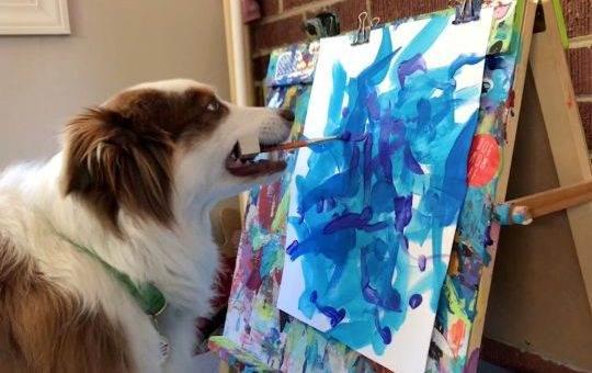Животные, которые любят рисовать (12 фото)