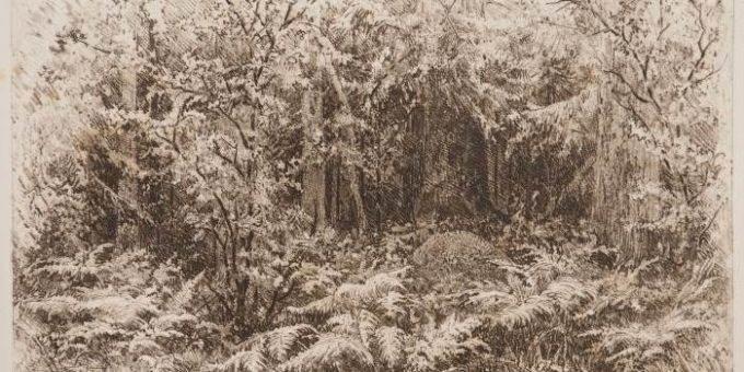 Выставка офортов И.И. Шишкина в Белгородском государственном художественном музее