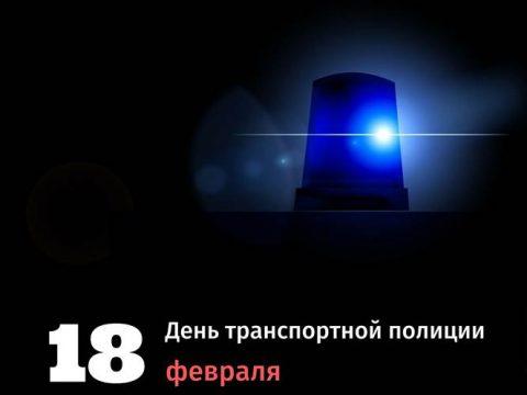 День транспортной полиции