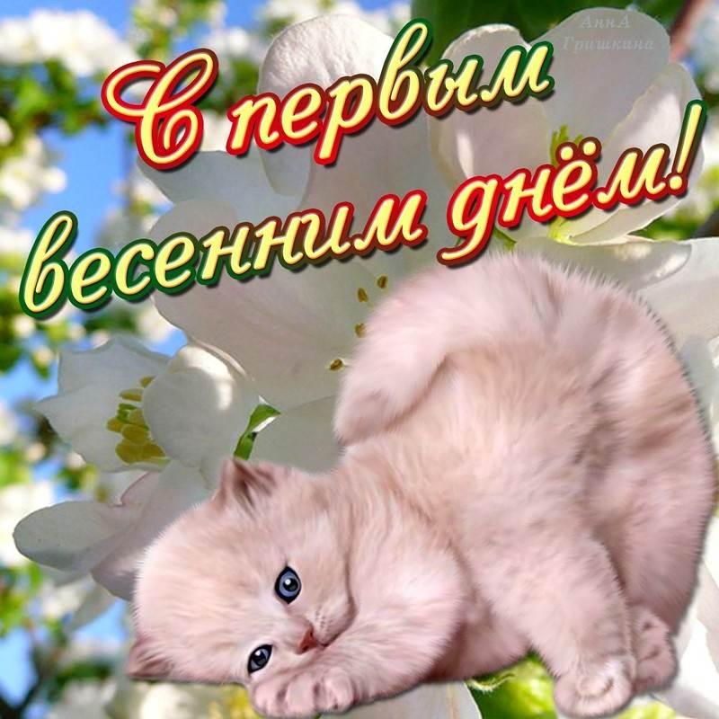 1 день весны открытки поздравления