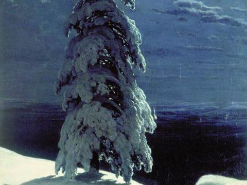 Шишкин. На севере диком
