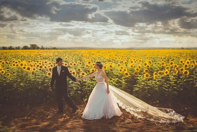 Жених и невеста в подсолнухах фото