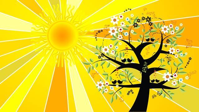 Солнечный день рисунок