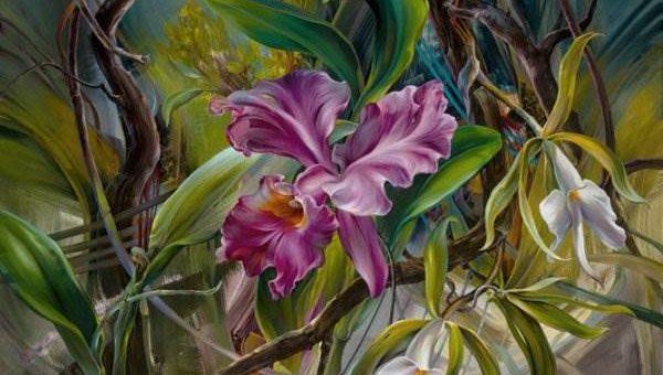 Vie Dunn-Harr художник из США