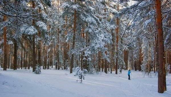 Фотограф Дмитрий Постников - Зима