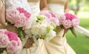 Выбор свадебного агентства – пошаговое руководство