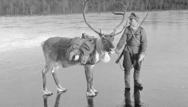Финляндия во Второй Мировой Войне (18 фото)