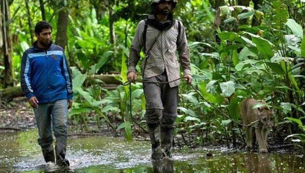 Центр спасения диких животных в Боливии фото