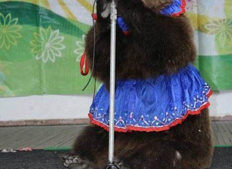 Выступление цирковых артистов с дрессированными животными на вашем празднике