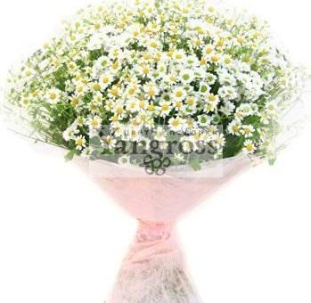 Цветы от Yangross