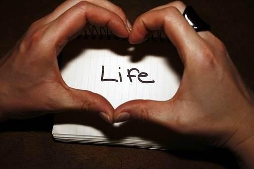 Любите жизнь