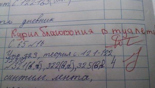 Убойные записи в школьных дневниках