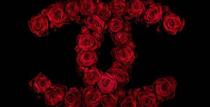 Логотипы из роз. Фотограф Alexander James