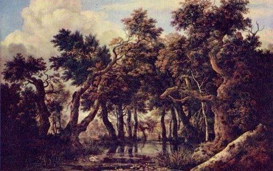 Якоб ван Рёйсдал картины