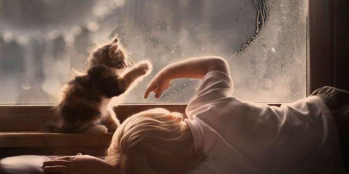 Фотограф Елена Шумилова - Дети и домашние животные