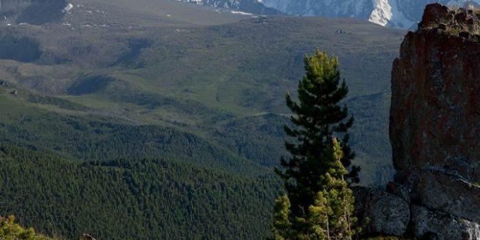 Пейзажи Алтая