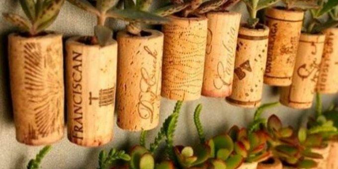 Миниатюрные сады в горшках