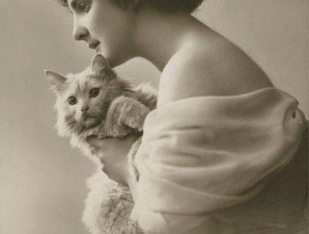 Ретро фотографии кошек