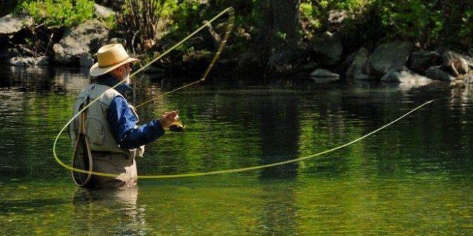Лесные озера для рыбака
