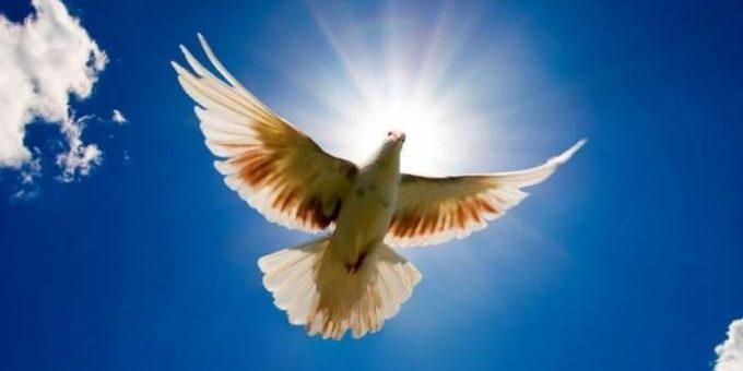 Международный день мира 21 сентября