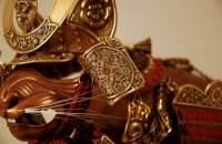 Доспехи для кошек и мышей, Джефф де Бур
