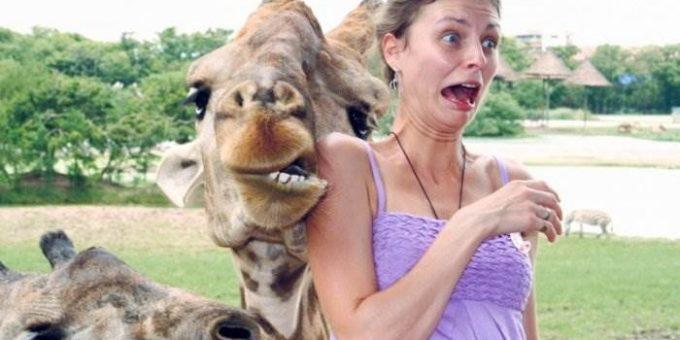 Самые смешные фото людей и животных (16 фото)