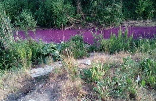 Река Мурзинка в Петербурге окрасилась в фиолетовый цвет фото
