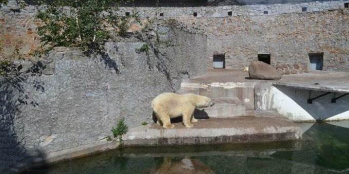 Петербургский Зоопарк и Океанариум