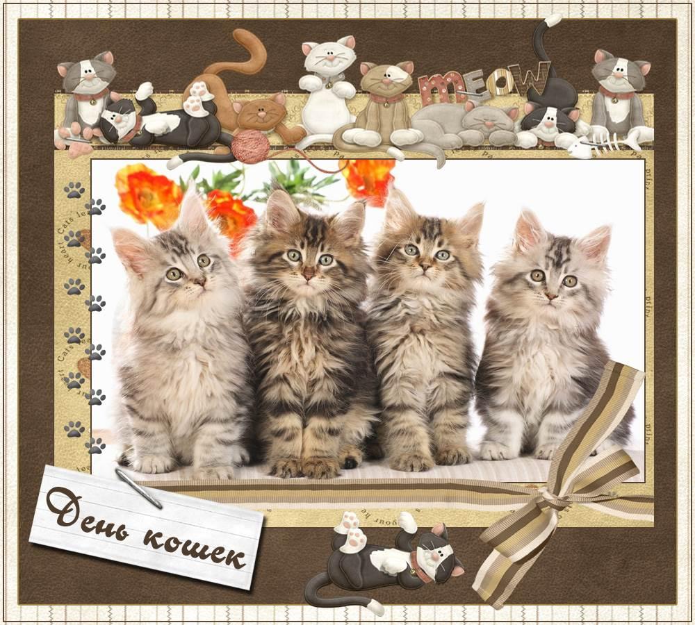 Черно-белые картинки собак и кошек