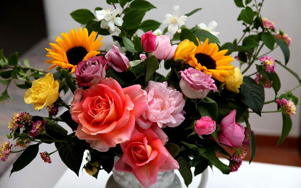 Галерея картинок с цветами
