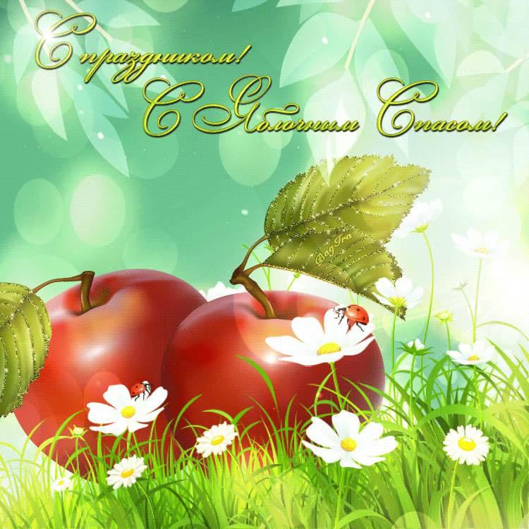 Картинки поздравления с яблочным спасом, бьется картинки