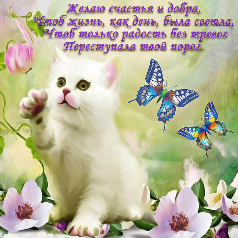 Красивые картинки с пожеланиями добра и здоровья