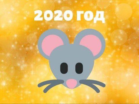 Год крысы 2020 картинка