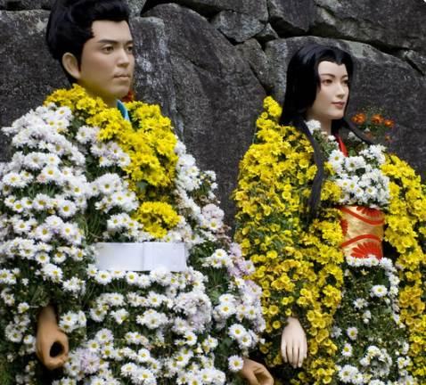 Душа осени – хризантема и легенды о ней