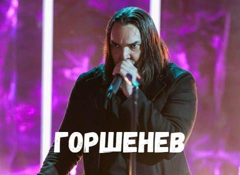Горшенев концерт фото