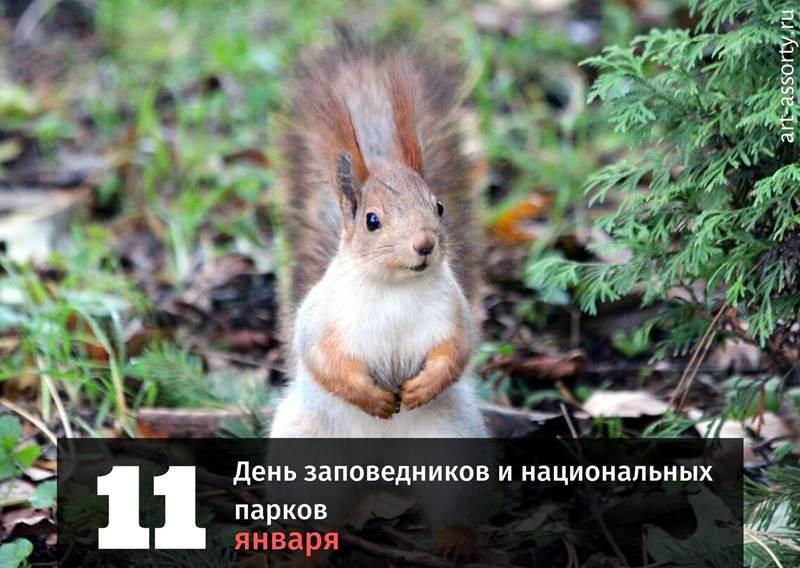 День заповедников и национальных парков картинка