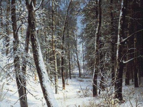 Картина Шишкина Зима в лесу. Иней