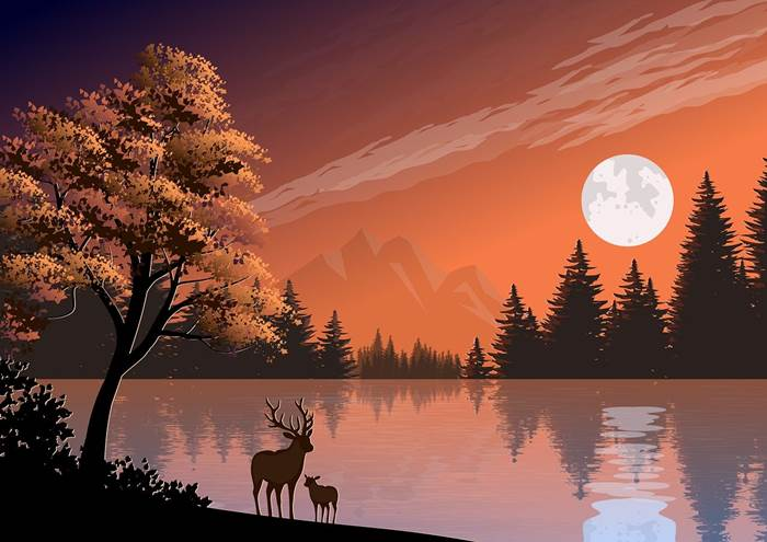Лунная ночь на природе